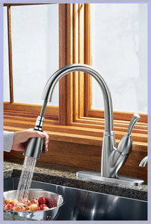 Kitchen Pull Out Spray Faucet and Sink