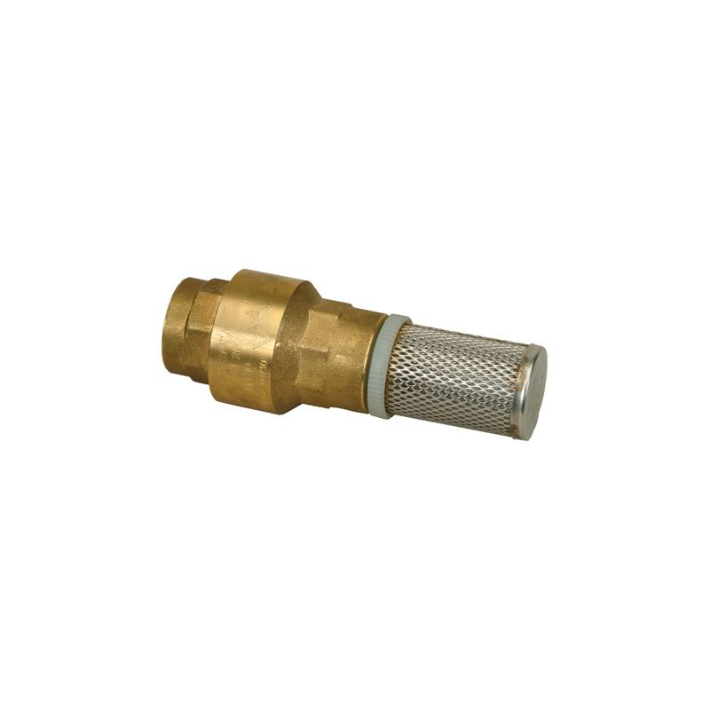 Proflo Pfxbfvj N A 1 1 2 Inch Foot Valve With Stainless